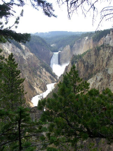 Yellowstone Falls, WY  adventuretravel.about.com